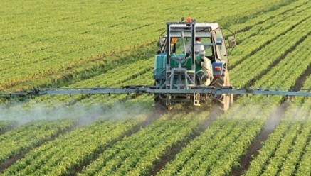 <strong>Herbicides</strong>