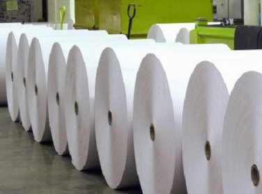 <strong>Pulp Paper Cellulose manufacturing</strong>