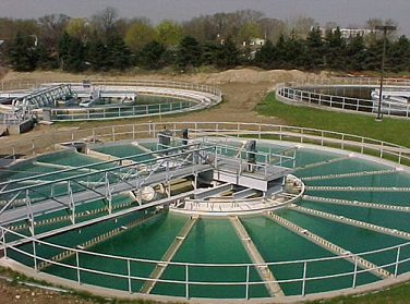 <strong>Flocculant in sewage treatment</strong>